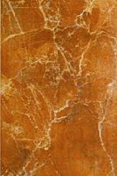Плитка 52321 Aroa orange 20х30