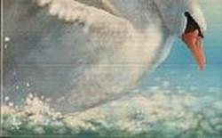 Панно Лебеди элемент 2
