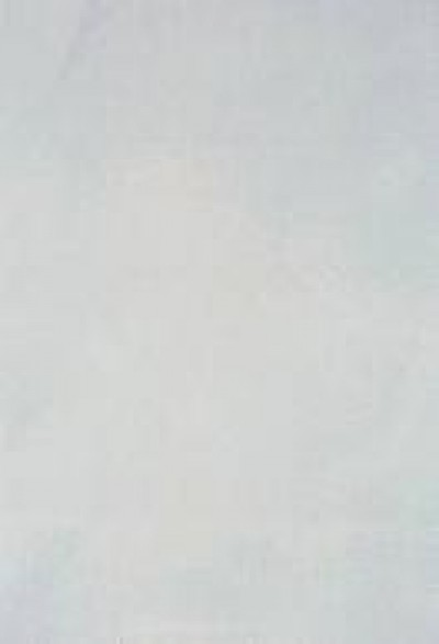 Плитка Alexa BLC 27.5x40