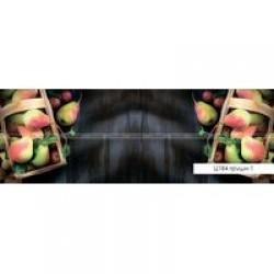 Фартуки Полноцветные гладкие ВИКТОРИЯ  847х2440х3,2мм Ц184