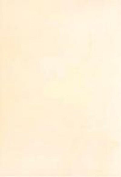 Плитка Alexa PNC 27.5x40