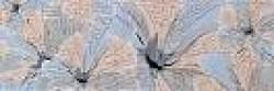 Бордюр Alexa BL 9.6x27.5